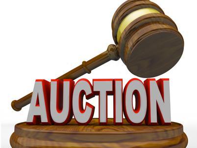 2G Spectrum Auction Bidders India