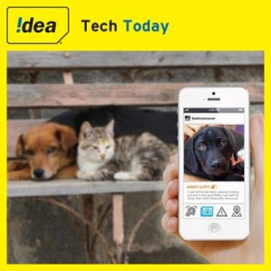 Idea Cellular Charts Data Story