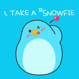 snow-mobile-video-app